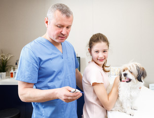 Cheerful girl with dog at veterinarian clinic