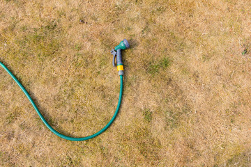 Hose and spray connector against a parched and brown garden lawn