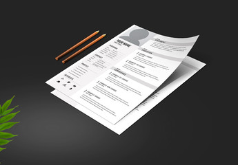 Resume Layout with Light Gray Sidebar