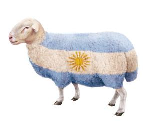 mouton- drapeau d'Argentine- bleu- blanc-lait-illustration- photo