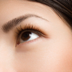 Female eye with long eyelashes closeup. Human eye. Brown eyes with accurate eyebrows. Easy make-up, ideal skin