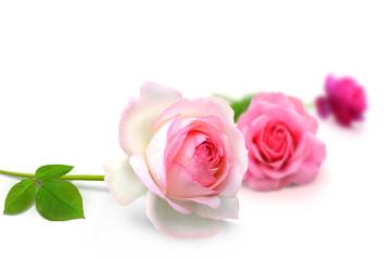 Blumen 914