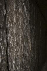 texture of rock salt