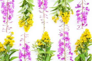 Lilac and yellow flowers on white background. Flat lay, top view
