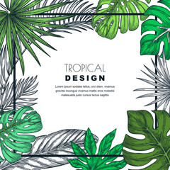 Tropical frame with palm leaves. Vector sketch illustration of jungle plants. Poster, banner, greeting card template.