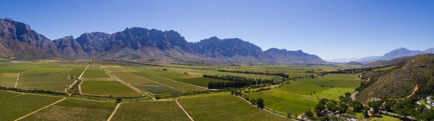 Aerial photo over the bright green vineyards of the Slanghoek valley near Worcester in the Western Cape of south africa