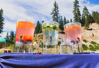 Pitchers of Fruit-Infused Water Near Forest