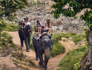 Young caucasian tourists ride on elephants in the jungle