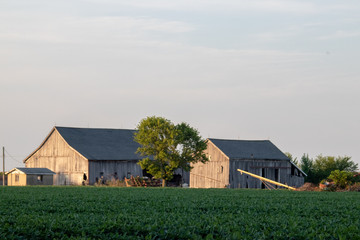 rural farm barns