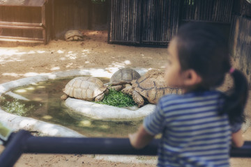 The little girl who was watching the turtles eats in the zoo with sad eyes. selective focus