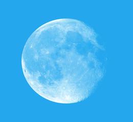 Fototapete - Full Moon isolated