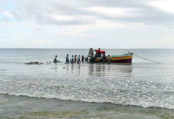 Subsistence fishermen pull in their nets, in Pemba