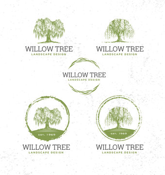 Willow Tree Landscape Design Creative Vector Nature Friendly Sign Concept. Sustainable Eco Illustration