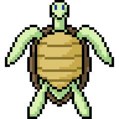 vector pixel art turtle stand front