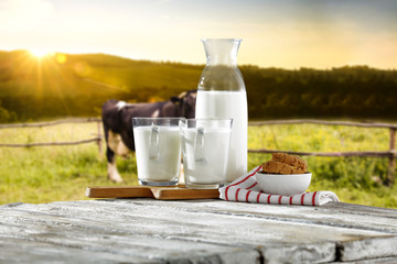 fresh cold milk and morning rural landscape with cow