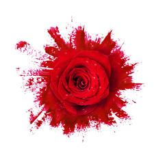 Red rose flower on paint brushstrokes