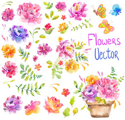 Watercolor beautiful floral design. Brigft flowers over white background. different kind of branches, flowers and leaves, big collection