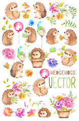 Watercolor Hedgehogs. Babies. Watercolor little animal clipart