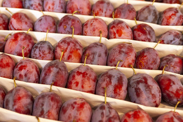 Juicy fruits of plums are spread out in even rows in the shop window