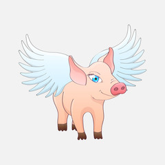 Funny pig with wings isolated on a gray background