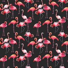Watercolor seamless pattern on black background. Illustration with pink flamingo. Tropical bird. Paradise.