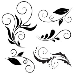 Calligraphic design elements, Vector set