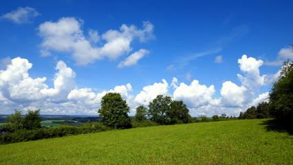 herrlicher Wolkenhimmel über Wiese mit Bäumen an einem sonnigen Tag im Frühling