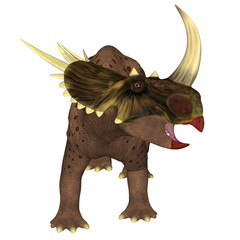 Rubeosaurus Dinosaur on White - Rubeosaurus was a Ceratopsian herbivorous dinosaur that lived during the Cretaceous Period of North America.