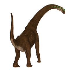Giraffatitan Dinosaur Tail - Giraffatitan was a herbivorous sauropod dinosaur that lived in Africa during the Jurassic Period.