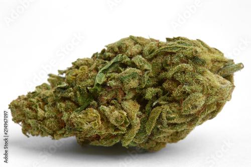 Close up of Death Wish strain legal prescription and