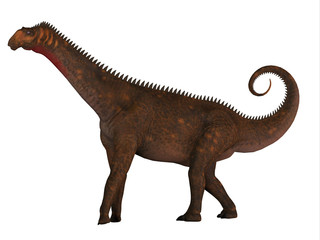 Mierasaurus Dinosaur Side Profile - Mierasaurus was a herbivorous sauropod dinosaur that lived in Utah, USA during the Cretaceous Period.