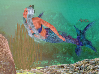 Marine Mermaid - A beautiful mermaid crowned with seashells swims gracefully underwater through a marine reef.