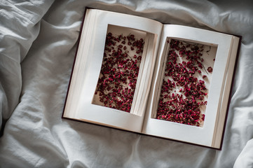 Vintage books with dried red flowers on a white bed. Concept Nostalgic and remembrance vintage background