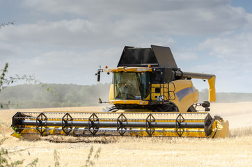 large combine harvester collecting grain from field during an English summer