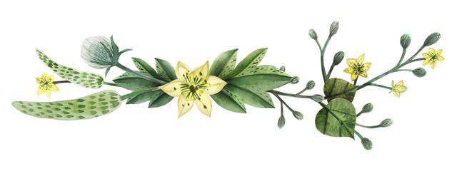 Wild Plants hand painted watercolor headline or ending vingette