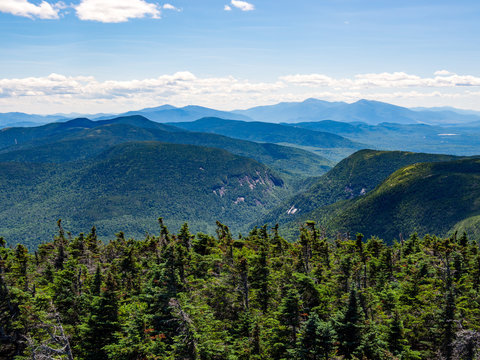 Mountain Summit Vista, Dense Forest, Mahoosuc Range, Maine