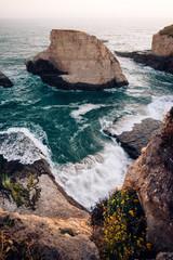Shark Fin Cove, Santa Cruz, California, America, USA