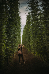 Woman standing in a hop field taking a photo, Serbia