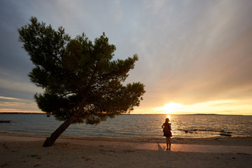 Back view silhouette of slim woman in short dress and with backpack standing alone near big tree at...