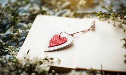 Heart and book. Love