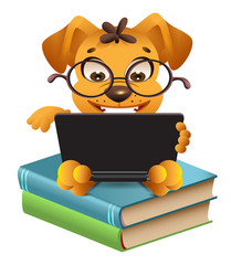 Funny yellow dog sitting on books and reading laptop