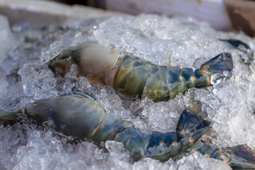 Image of frozen shrimp in the market, Thailand