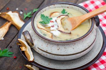 Bowl of creamy mushroom soup with dried mushrooms