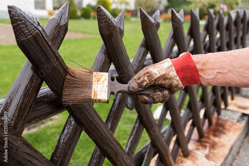 Prächtig Gartenzaun mit Pinsel streichen - Nahaufnahme