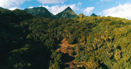 mountain landscape on a Pacific island
