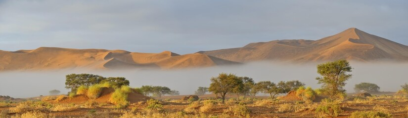Sunrise over morning mist in the Namib Desert near Sossusvlei, Namibia, Africa