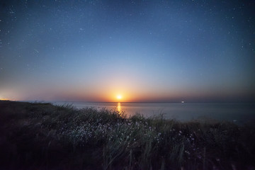 Night photo. The moon rising over the sea, flowers on the wild wild seashore. starry sky over the sea.