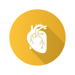 Human heart anatomy flat design long shadow glyph icon