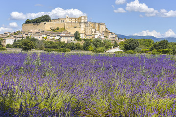 village Grignan situated on a hill with lavender, Provence, France, village with castle Château de Grignan, in Drôme department, region Auvergne-Rhône-Alpes