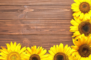 Beautiful bright sunflowers on wooden background, top view
